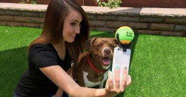 Quelle: https://www.kickstarter.com/projects/poochselfie/pooch-selfie-the-best-way-to-capture-selfies-with?ref=nav_search