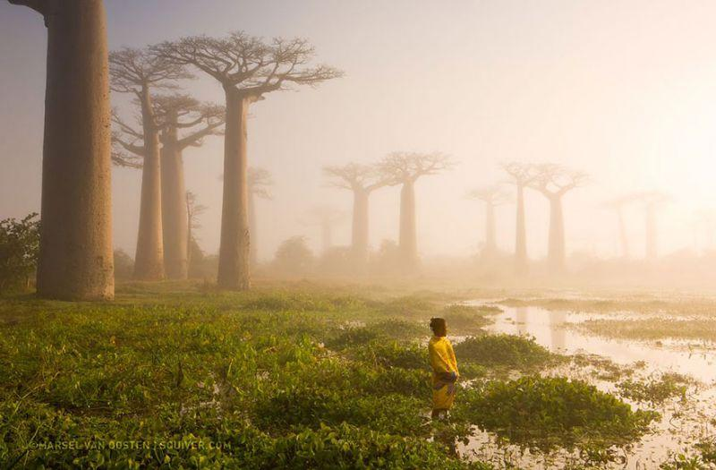 Quelle: http://yourshot.nationalgeographic.com/photos/5845692/